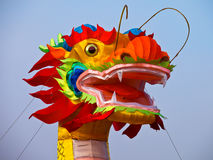Colorfull drake Arkivfoto