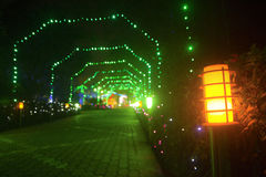 Colorfull e luz de rua sonhadora Imagem de Stock