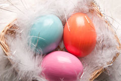 Colorfull Easter eggs on feather background Royalty Free Stock Photo
