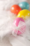 Colorfull Easter eggs on feather background Royalty Free Stock Photos