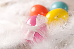 Colorfull Easter eggs on feather background Stock Image