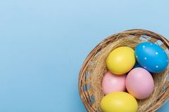 Colorfull easter eggs in nest on blue background with space stock photography