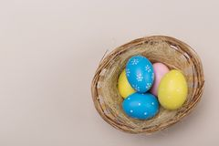 Colorfull easter eggs in nest on pastel background with space. Concept royalty free stock photo