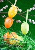 colorfull Easter jajek gniazdeczko Zdjęcia Stock