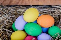 Colorfull Easter jajka na brown trawie Fotografia Stock