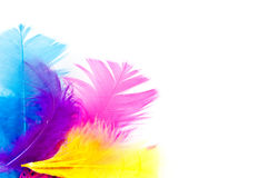 Colorfull feathers with copy-space Royalty Free Stock Photos