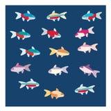 Colorfull-Fische vektor abbildung