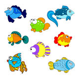 Colorfull fishes Stock Image