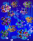 Colorfull  fishes in marine environment Stock Image
