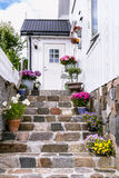 Colorfull flowers on he staircase of a white wooden house in Sca Royalty Free Stock Photos