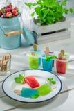 Colorfull ice cream with fruity yogurt Stock Photos
