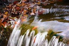 Colorfull liście w małej siklawie na Harasov jeziorze w jesiennym Kokorinsko kształtują teren teren Obraz Royalty Free