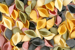 Colorfull pasta shells Royalty Free Stock Photos
