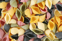 Colorfull pasta shells Royalty Free Stock Image