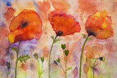 Colorfull poppies and buds. The dabbing technique near the edges gives a soft focus effect due to the altered surface roughness of the paper Stock Photography