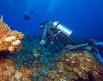 Colorfull rev och grupp av dykare, Cayo Largo, Kuba Arkivbilder