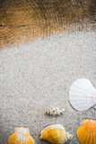 Colorfull Sea shells sand board Royalty Free Stock Photo