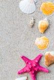 Colorfull Sea shells sand board Stock Image