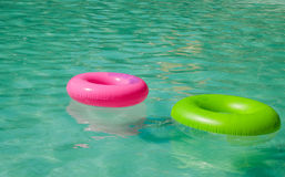Colorfull swim ring. Floating on a green Stock Image