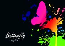 colorfull tapeta Fotografia Royalty Free