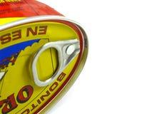 Colorfull Thunfisch kann einzeln aufführen Lizenzfreie Stockfotos