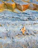 Colorfull vaggar klippor Arkivbilder