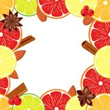 Colorfull van de achtergrond veganistdag vector vierkant grenskader Stock Fotografie