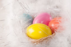 Colorfull Easter eggs on feather background Royalty Free Stock Photography