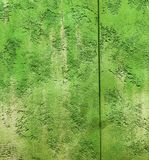Colorfull vibrant outdoor bumpy freh green color perspective vintage wall. Texture royalty free stock image