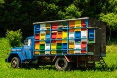 Colorfull y la abeja vibrante encorcha en el camión viejo en Eslovenia Imagen de archivo libre de regalías