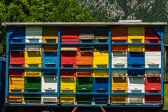 Colorfull y la abeja vibrante encorcha en el camión viejo en Eslovenia Fotos de archivo