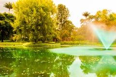 Colorfullfontein in het parkmeer royalty-vrije stock afbeelding