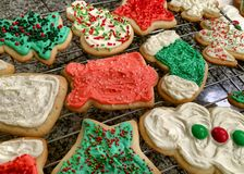 Colorfully iced, homemade Christmas cookies on a wire rack royalty free stock photography