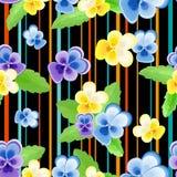 Colorfulseamless wzór z pansies-01 Zdjęcie Stock