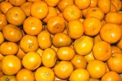 Colorfulu Tangerines Stock Image