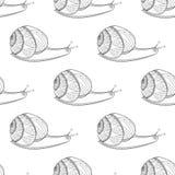 Colori in bianco e nero della lumaca Molluschi degli invertebrati Modello senza cuciture di vita di groviglio selvaggio di zen Immagini Stock Libere da Diritti