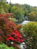 Colori cambianti dell'autunno Fotografia Stock Libera da Diritti