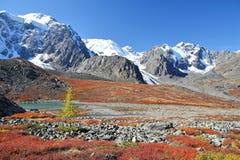 Colori d'autunno in montagne di Altai Fotografie Stock Libere da Diritti