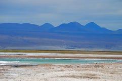 Colori del deserto - Atacama Fotografia Stock
