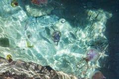 Colori del mare Fotografia Stock Libera da Diritti