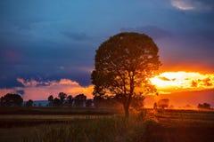 Colori del tramonto immagine stock