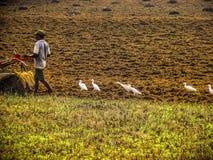 Colori dell'India Fotografia Stock