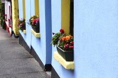Colori dell'Irlanda Fotografie Stock Libere da Diritti
