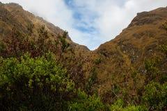 Colori della natura nelle montagne Immagini Stock