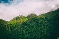 Colori della natura nelle montagne Fotografie Stock