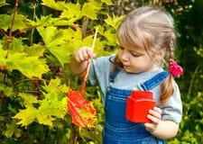Colori della pittura della bambina sulle foglie dell'albero Fotografia Stock