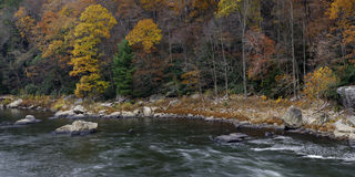 Colori di autunno al parco di Ohiopyle immagine stock