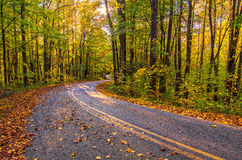 Colori di autunno, backroads occidentali della Nord Carolina Fotografie Stock Libere da Diritti