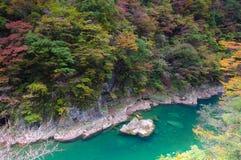 Colori di autunno della valle di Dakigaeri-Keikoku Fotografia Stock Libera da Diritti