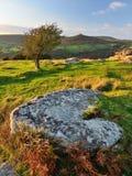 Colori di autunno di Dartmoor Fotografie Stock